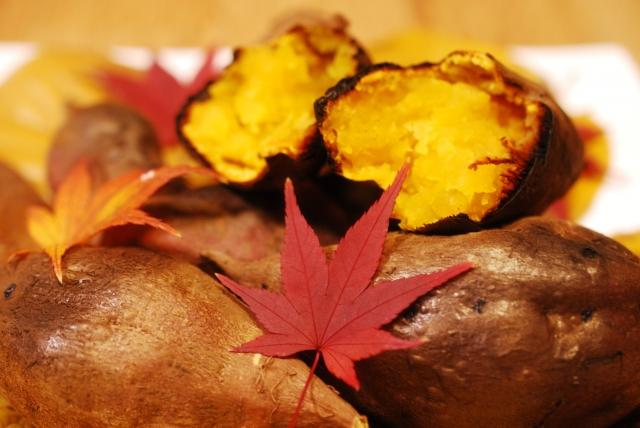 焼き芋に最適なさつまいもの種類は…これ!マロンゴールドの特徴も