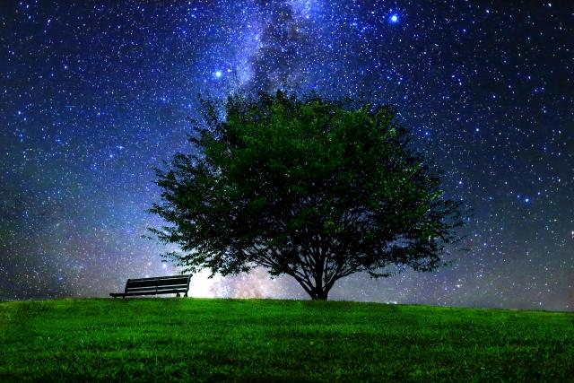 小岩井農場の星を見る会