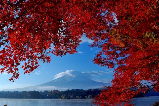 富士山紅葉03