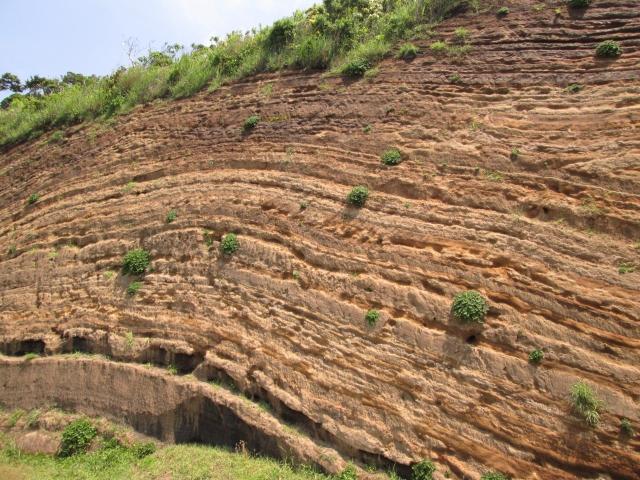 恐竜の化石発掘地層